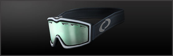 main_metal_anti_flash_goggles